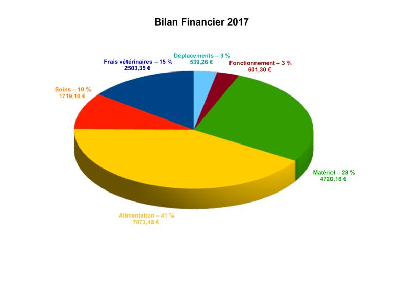 LSA_BilanFinancier2017-P1